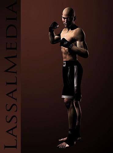 lassalmedia-martial arts