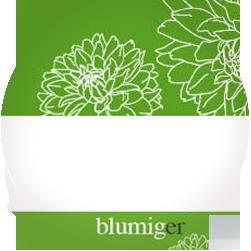 Final Illustrations for Blumiger Online