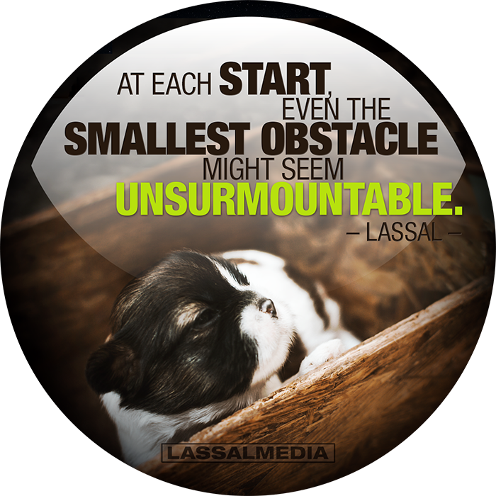 "LassalMedia: ""At each start even the smallest obstacle might seem unsurmountable."" –Lassal"