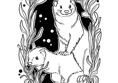 05-Little Hunterman's Ferret Friends